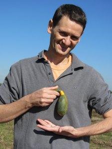 Gilles gourd