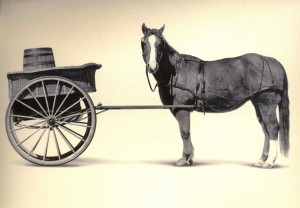 cart_before_the_horse1-1024x711