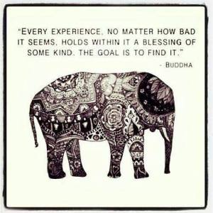 Every experience is a blessing