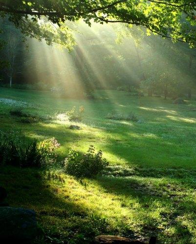 Shining Light Image